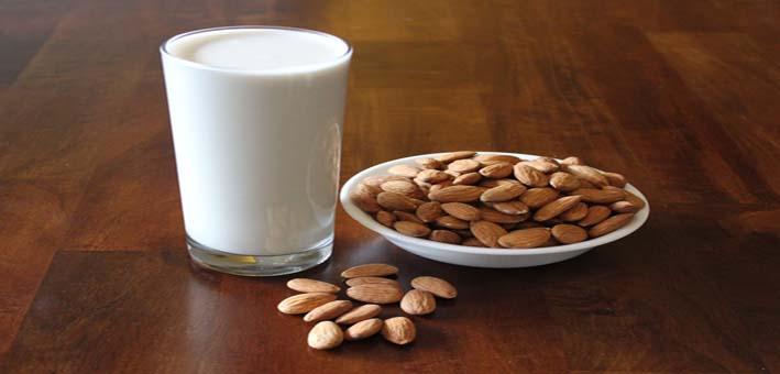 9628-almond-milkweb
